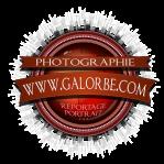 BadgeVintage2016COM-V3-1000px